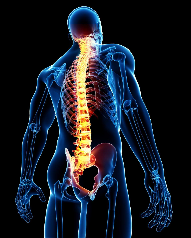 твоя спина не болит