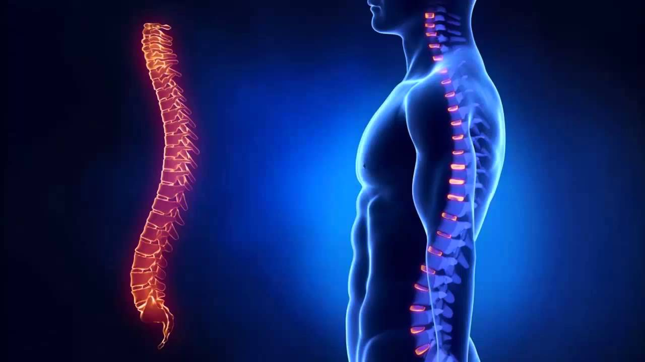 vidy-osteohondroza-po-lokalizacii